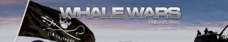 Whale Wars season 8 release date