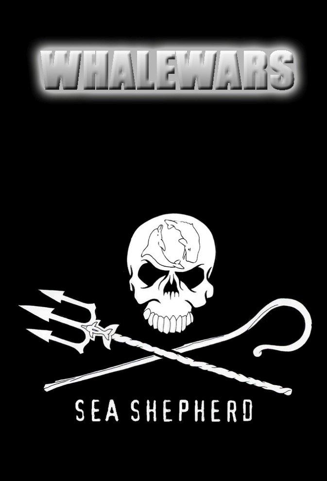 Whale Wars photo